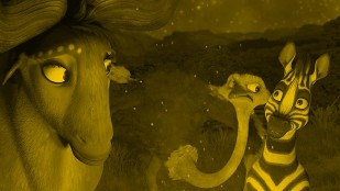 Fotos do filmu Kumba