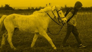 Fotos z filmu Miejscy kowboje